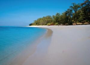 Timor-3