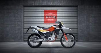 SWM RS650R