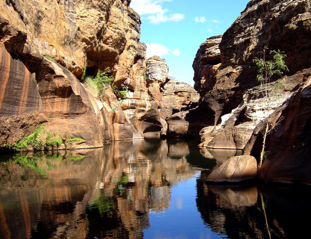 Cobbold Gorge.  An unexpected oasis.